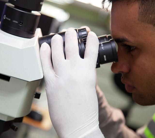 Análise qualitativa e quantitativa da microscopia de clínquer.